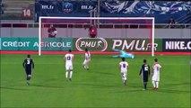 Résumé Nancy 2-3 Lyon vidéo buts OL - ASNL - Coupe de France