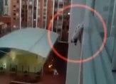 Un homme risque sa vie pour sauver un chien qui risque de tomber d'un balcon !