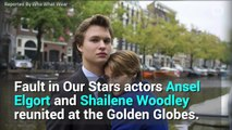 Shailene Woodley and Ansel Elgort Shared the Sweetest Golden Globes Reunion