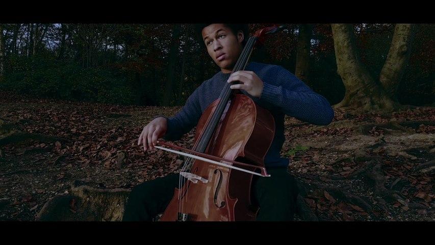 Sheku Kanneh-Mason - Saint-Saëns: Le Carnaval des animaux, R.125 - 13. The Swan (Arr. Cello, Harp & Ensemble)