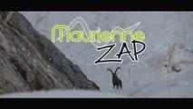 Maurienne Zap # 370