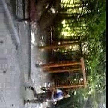 Szabo Eugen Mihai - plimbare prin parc nr 7[1]