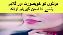 pink lips - Homemade Beauty Tips For Pink Lips Naturally In Urdu - Home tips for pink lips