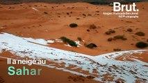 Il a neigé au Sahara, le désert le plus chaud du monde