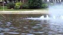 Aparece una mujer muerta en una balsa de agua en Madrid