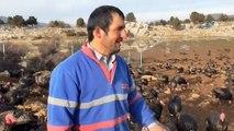 Konya'da yılbaşından sonra hindi satışı da fiyatı da düştü