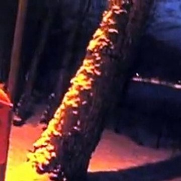 Sovata 2007 - Szabo Eugen Mihai( video 3)