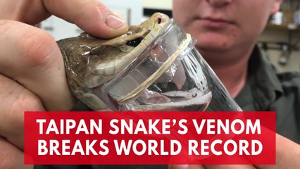 Antivenom Resource | Learn About, Share and Discuss