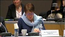 Commission des affaires culturelles et commission des affaires européennes : table ronde sur le cinéma et l'audiovisuel européens (deuxième partie) - Mercredi 8 février 2017
