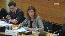 Lutte contre le terrorisme (mission de suivi) : Mme Juliette Méadel, secrétaire d'État chargée de l'Aide aux victimes - Lundi 19 décembre 2016