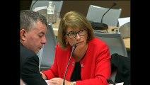 Commission du développement durable : Réunion avec une délégation de la commission des transports du Bundestag - Mercredi 21 octobre 2015