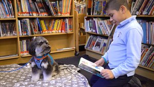 These Little Kids Are Reading To Therapy Dogs