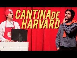 CANTINA DE HARVARD | Na Sarjeta Show