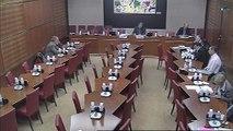 Audition de M. Edouard Couty, pdt de Missions et organisation de la santé mentale et de la psychiatrie - Jeudi 7 février 2013