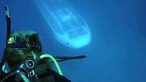 Quand un bateau sous marin passe tout pret de plongeurs