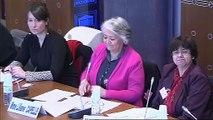 Audition sur les politiques menées par les départements - Jeudi 11 avril 2013