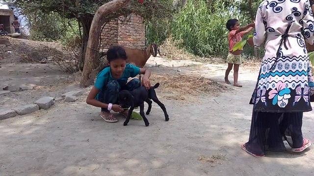 City children full enjoying in bihar village Harpur