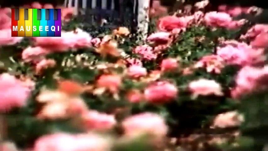 HD - Ik Baar Milo Hum Se - Ghulam Abbas - ٖFilm Bobby (DvD MD. Amjad Bobby Vol.1 Title 9)