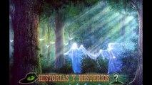 5 Razas de alienígenas que caminan entre nosotros ( Extraterrestre en la tierra )
