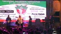 koncert Riblja corba live in Kavadarci