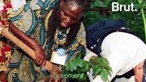Wangari Maathai,la première femme africaine à avoir reçu le prix Nobel de la Paix