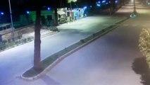 Alkollü Sürücünün Boş Yolda Ağaca Girdiği Kaza Kamerada