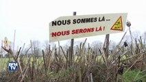 Notre-Dame-des-Landes: 455 gendarmes déployés dans la ZAD en vue d'une éventuelle évacuation