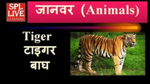 English Vocabulary Animals Name with Pictures and Hindi