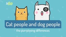 Here are Some Differences Between Cat And Dog People