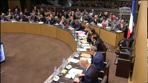 Commission des finances et commission des affaires économiques : M. Carlos Ghosn, Pdg de Renault - Mercredi 17 janvier 2018