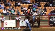 Cowboy RODEO! Riding Bulls n' Horses   Sheep at