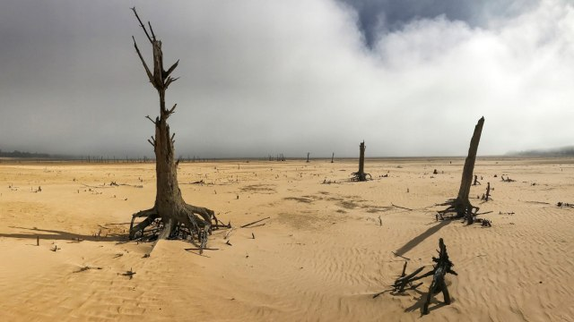 Cape Town, South Africa Is Running Out Of Water