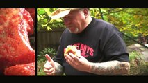 BBQ Meatballs Sub recipe by the BBQ Pit Boys