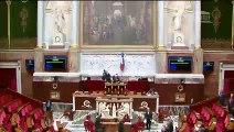 2ème séance : Entreprise nouvelle et nouvelles gouvernances (suite) ; Modalités de dépôt de candidature aux élections ; Indivision successorale et politique du logement en outre-mer  - Jeudi 18 janvier 2018