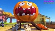Puppy Dog Pals Adventures In Puppy-Sitting Episode 5