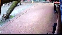 Tempête aux Pays-Bas : une maman et sa poussette échappent de peu au drame (vidéo)