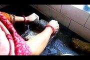 Fish Masala!!Fish Masala Recipe | फिश मसाला | Easy Cook with Food Junction!!easy way to make fish masala