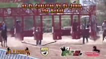 Terrible Accidente en Carreras de Caballos | 2016 |