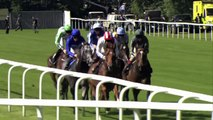 2014 St James's Palace Stakes - Royal Ascot - Kingman - Racing UK