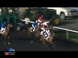 Race 4 - UAE Oaks Sponsored By The Saeed & Mohammed Al Naboodah Group