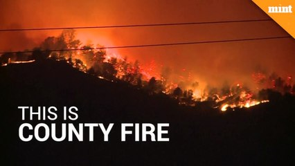 California's wildfire engulfs area twice the size of Singapore