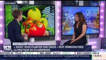 """Green Reflex: """"Savez-vous planter chez nous"""" veut démocratiser la pratique du co-jardinage - 03/07"""