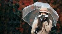 Monsoon: बारिश में पड़ जाते हैं बीमार तो अपनाएं ये घरेलु टिप्स, Remedies for Monsoon Flu | Boldsky