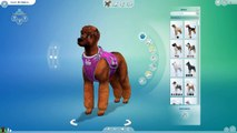 What If The Fox & The Hound Had Puppies?!  Sims 4: Cats & Dogs