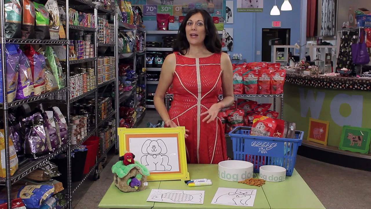 Preschool Pet Store Activity : Dog Care Info