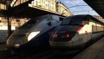 TGV 28000 ( TGV Réseau ) et TGV 2N2 ( RGV 2N ou EuroDuplex ) - LGV Est européenne - Paris - Est