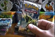 Opening a Sealed Box of Pokemon Black & White Trading Card Game Booster Packs (Part 1)