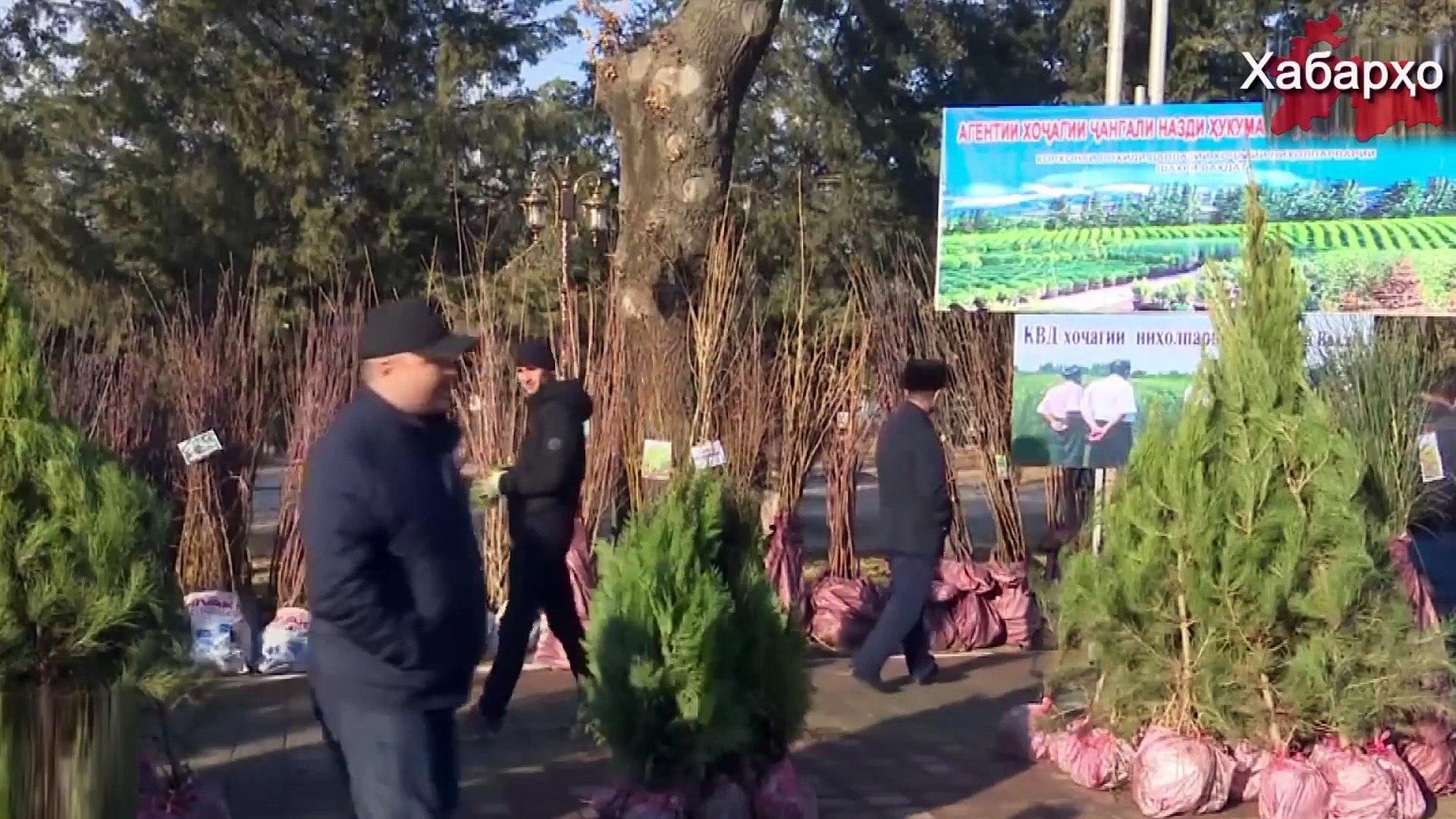 Новости Таджикистана и Центральной Азии на 30.01.2018