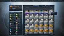 CS:GO Glove Case Unboxing! I GOT THE GLOVES! The Glove Collection