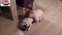 Funny Babies Can Fall Asleep In Every Situation Compilation 2017